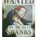ONEPIECEの赤髪のシャンクスの真の目的|赤髪はピースメーカー?