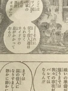 onepiece909話ネタバレワノ国将軍黒炭オロチ