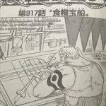 ワンピース917話の扉絵からベラミーの深堀り考察|DQN海賊から芸術家へ!