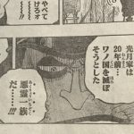 ONEPIECE916話ネタバレ光月家が悪霊一族の理由|おでんとトキトキの実