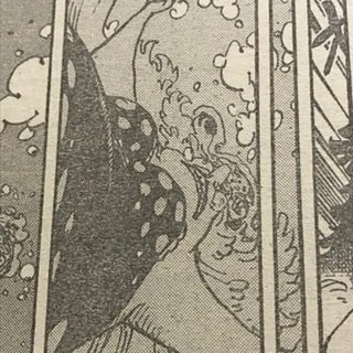 ワンピース931話ビッグマムカイドウ