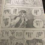 【ワンピース考察】日和=小紫が無傷な理由?|狂死郎はかなりの覇気使い?