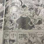 【ワンピース考察】赤鞘九人男が皆デカイ理由について|秘密は流桜?