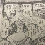 【ワンピース961話以降考察】ヒョウ五郎親分の正体は狛犬ならぬ狛人?|現役で若い親分