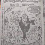 ワンピース971話ネタバレ!釜茹での刑執行!|衝撃とショックに涙無しでは読めぬ!