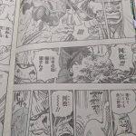 【ONEPIECE976話考察】河松VSカン十郎|魚人ミンク黒炭への迫害について