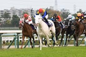 桜花賞、阪神牝馬S、NGTの展望と予想|2021牝馬クラシック開幕!